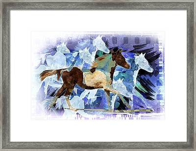 Profile Portrait Of A Pinto Horse Running Framed Print