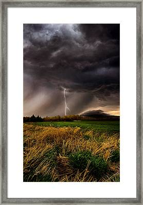 Profound Framed Print by Phil Koch