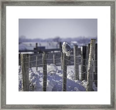 Project Snowstorm Framed Print by Thomas Young