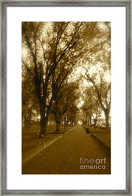 Promenade At Dusk Framed Print by Monico Art