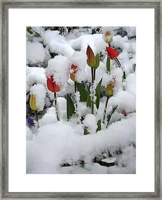 Promises Framed Print by Karen Jane Jones