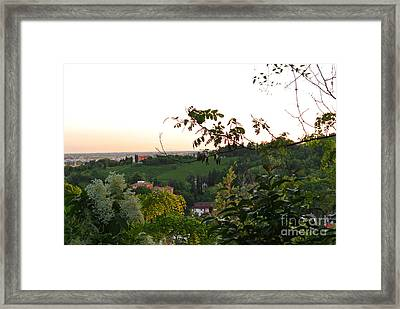 Prosecco Vineyards Framed Print by Sarah Christian