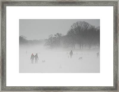 Prospect Park Brooklyn In Winter Framed Print
