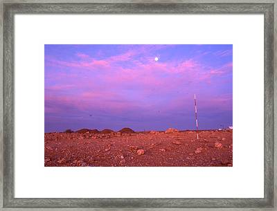 Prospecting Rod South Africa 1996 Framed Print by Rolf Ashby