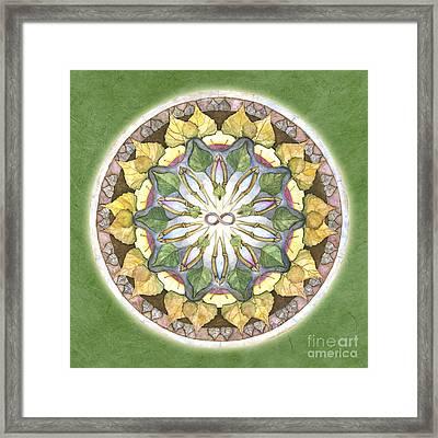 Prosperity Mandala Framed Print by Jo Thomas Blaine