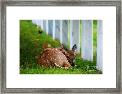 Protecting Our Heros Framed Print