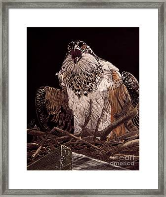 Protecting The Nest Framed Print