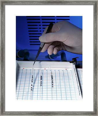 Protein Research Framed Print by Simon Fraser/science Photo Library