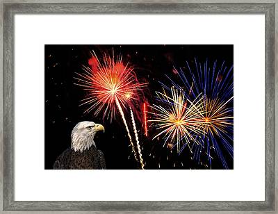 Proud And Free 3 Framed Print