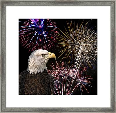 Proud And Free 7 Framed Print by Penny Lisowski