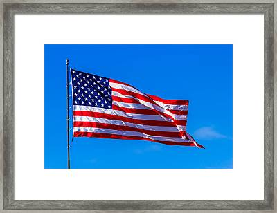 Proud And Free Framed Print by Doug Long