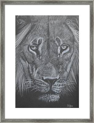 Proud Lion Framed Print