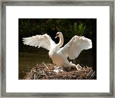 Proud Mother Framed Print