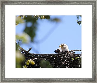 Proud Parent Framed Print