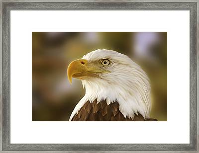 Framed Print featuring the photograph Proud Symbol Of A Nation  by Brian Cross