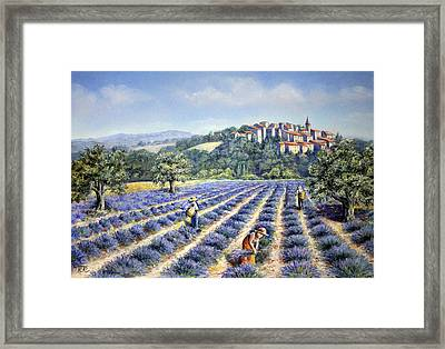Framed Print featuring the painting Provencal Harvest by Rosemary Colyer