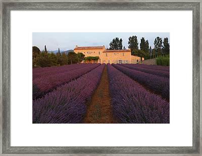 Provencal Villa  Framed Print