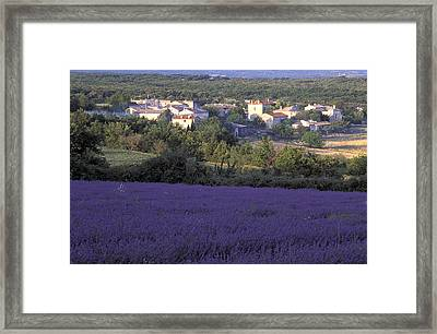 Provence Framed Print by Christian Heeb