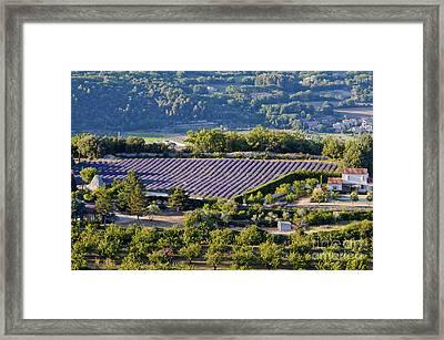 Provence Farmland Framed Print by Bob Phillips
