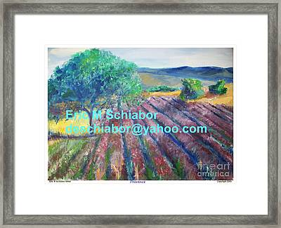 Provence Lavender Field Framed Print by Eric  Schiabor