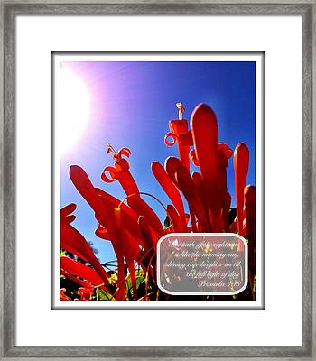 Proverbs 4 18 Framed Print