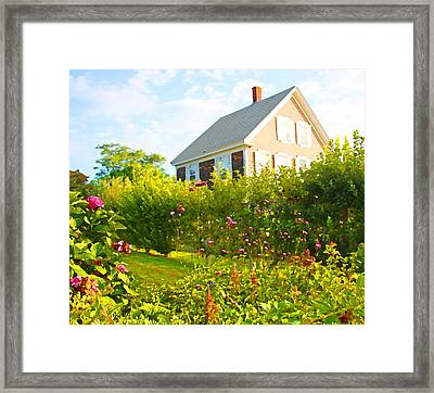 Provincetown Cottage With Green Brown And Pink Framed Print