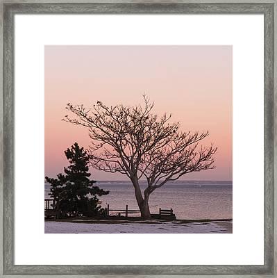 Provincetown December 2012 Framed Print