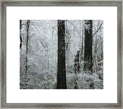 Provoking Memories Framed Print