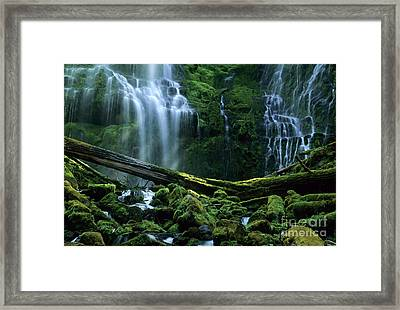 Proxy Falls Framed Print by Bob Christopher