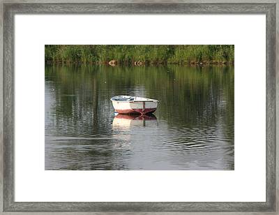 Framed Print featuring the photograph Prozac by Paula Brown