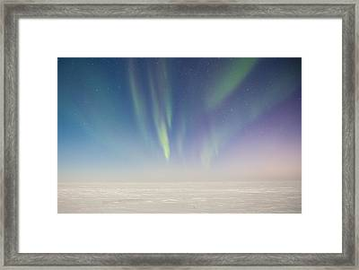 Prudhoe Bay Aurora Borealis Framed Print by Sam Amato