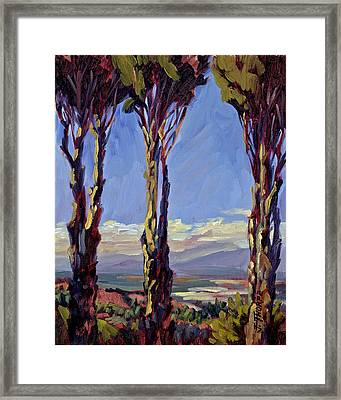 Pruned For The View Framed Print