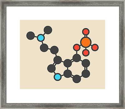 Psilocybin Psychedelic Mushroom Molecule Framed Print by Molekuul