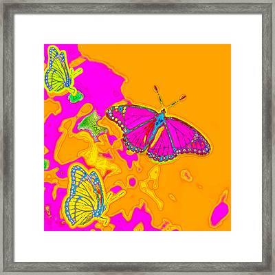 Psychedelic Butterflies Framed Print by Marianne Campolongo