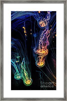 Psychedelic Cnidaria Framed Print