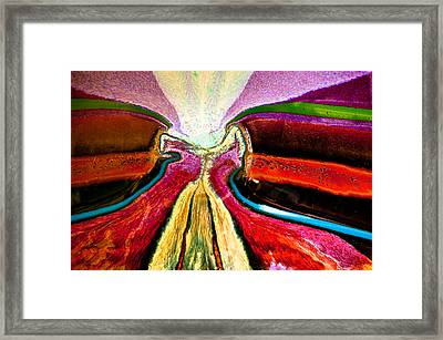 Framed Print featuring the photograph Psychedelic Dance by Crystal Hoeveler