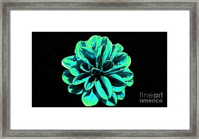 Framed Print featuring the photograph Psychedelic Flower 5 by Sarah Mullin