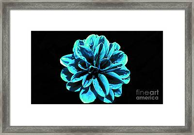 Psychedelic Flower 9 Framed Print by Sarah Mullin