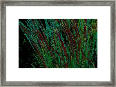 Psychedelic Grass Framed Print by Karla Ricker