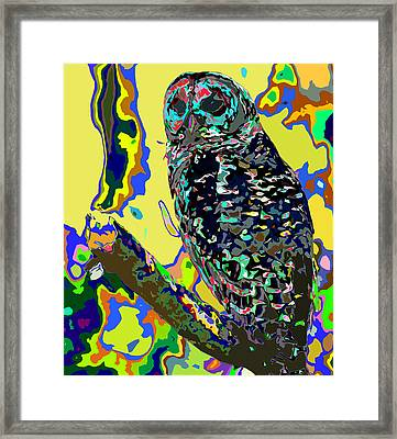 Psychedelic Owl Framed Print by Norman Johnson