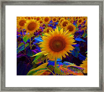 Psychedelic Sunflowers Framed Print