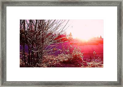 Psychedelic Winter   Framed Print by Martin Howard