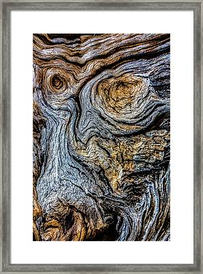 Framed Print featuring the photograph Psychedelic Wood by Beverly Parks