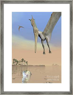 Pteranodon Fishing For Food Framed Print by Elena Duvernay