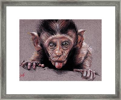 Pththth Framed Print by Michael Wheeler