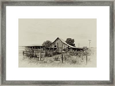 Puckerbrush Rd Barn  Framed Print by Wilma  Birdwell