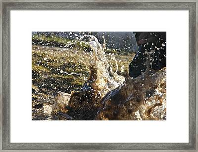 Puddle Jumping Framed Print by Darren Edwards