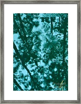 Puddle Of Pines Framed Print by Joy Hardee
