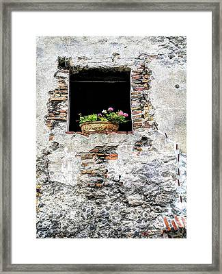 Puebla Window Flowers Framed Print by Craig T Burgwardt