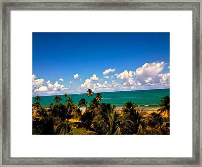Puerto Rican Escape  Framed Print by Danielle  Broussard